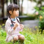 【買1送衣】兒童旗袍 古風 四季款〔櫻花秋風〕